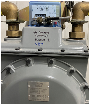 Commercial Gas Meter 1